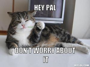 hey-pal-meme-generator-hey-pal-don-t-worry-about-it-68a046